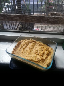 Butternut squash dip, chilled